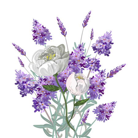 Lavender and peony bouquet Illustration