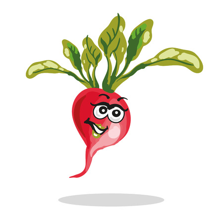 Happy radish cartoon character vector