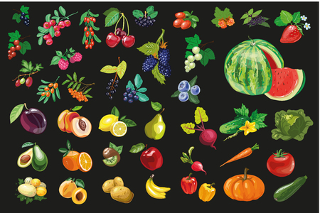 Fruits vegetables and berriesOrganic food icons vector illustration Illustration