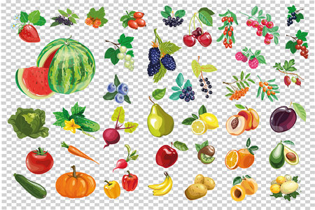 Vegetable berry fruit big collection vector kit isolated Ilustração