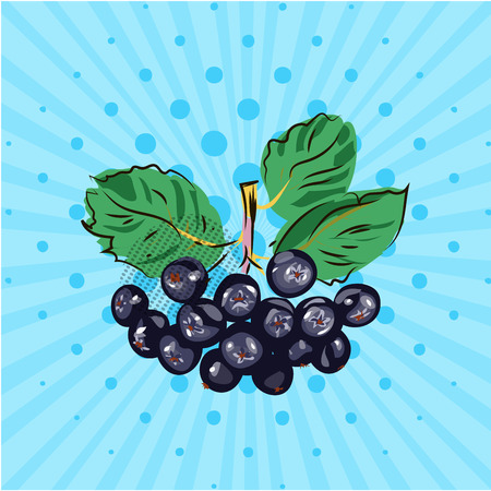 Hanging bundle of chokeberry on a blue background,lines,dots.Hand made in the style of pop art.Vector illustration.Eco
