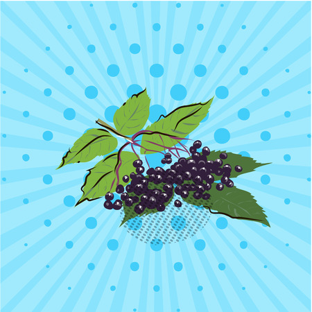 Branch with elderberries on a blue background,lines,dots Vector illustration Hand drawn in style pop art