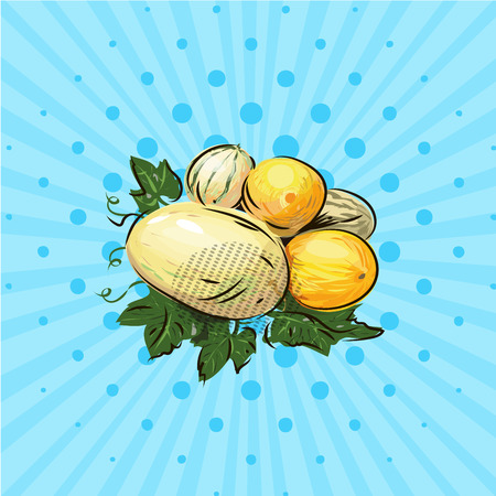 A few ripe melons on a blue background vector illustration. Hand drawn no style pop art.