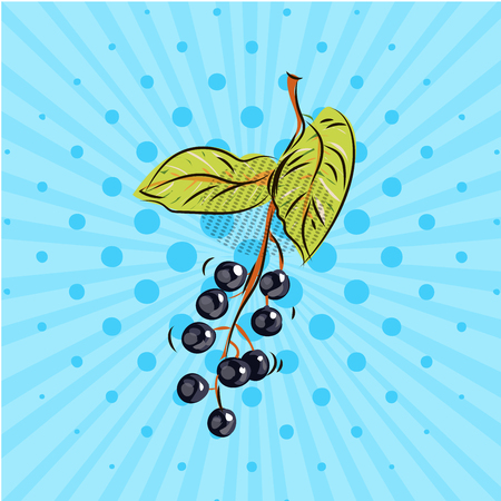 Bird cherry twig on blue background in Hand drawn illustration with style pop art, cartoon, eco food.