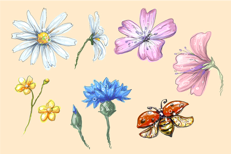 Lady bug flying with flowers set vector collection of cornflower chamomile buttercup with buds for compositions and bouquets vector illustration