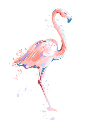 Pink flamingo sketch vector illustration on white background. Vettoriali