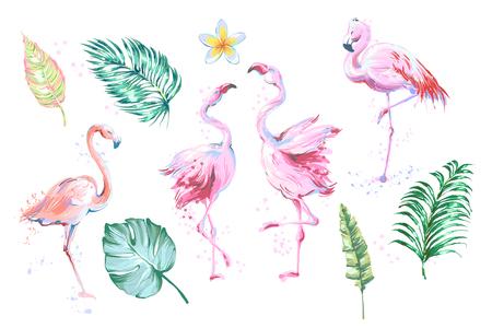 Summer set of design elements tropical leaves, flowers, flamingos. Vector illustration. Ilustração