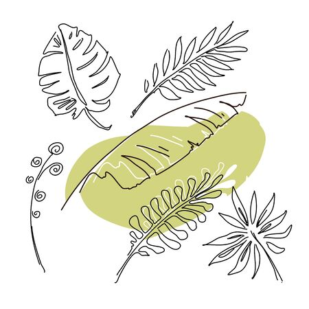 Hand drawn linear collection with tropical leaves Stock Illustratie