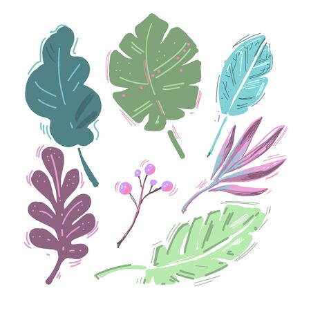 Tropical leaves collection isolated on white. Modern Cartoon hand drawn leaf and berries set vector illustration. Ilustração