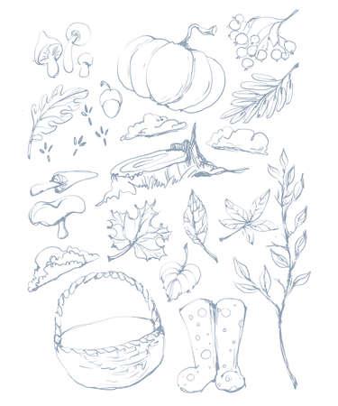 Autumn forest harvest clip art coloring page line art