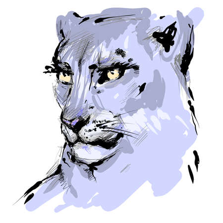 Lioness head with yellow eyes drawing, vector hand drawn sketch