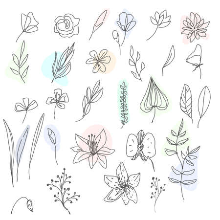 Set of flower and Botanical Icons line style. Included the icons as floral, nature, bouquets, flowers, bloom And Other Elements. customize color, easy resize