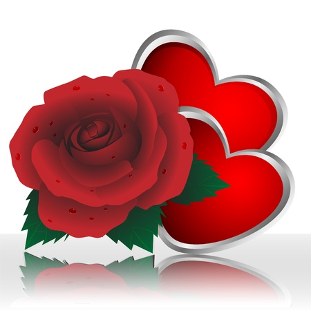 Rose of red color and two hearts on a white background
