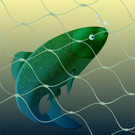 netting: Vis kreeg aan een vis net Stock Illustratie