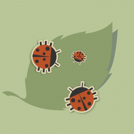 family of ladybugs sitting on a green leaf