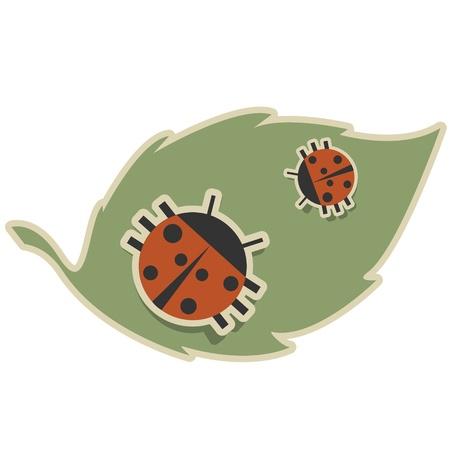 Two ladybirds sitting on a green leaf Illustration
