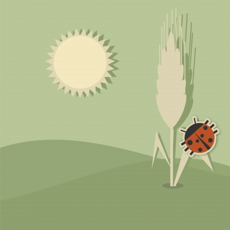 hilly: Ears of wheat and ladybug on the background of hilly fields Illustration