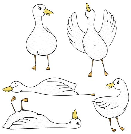 Simple funny ducks, cartoon illustration on white background.