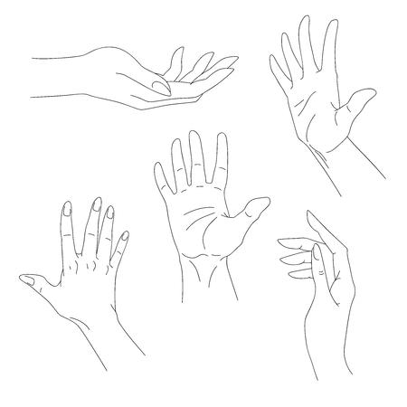 Set of hand drawn arms, vector illustration Çizim