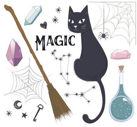 Magic set, cat, potion, broom, web, vector Çizim