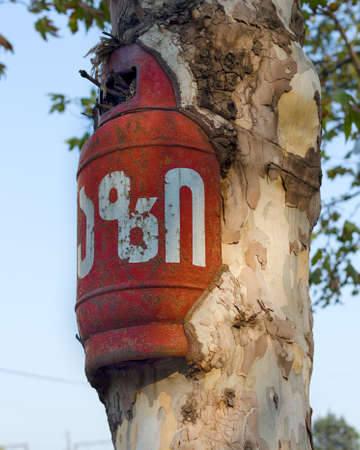 Empty gas cylinder ingrown into live tree, absorbing by growing tree of a foreign object, power of nature. Victory of nature over human intervention. On cylinder there is inscription