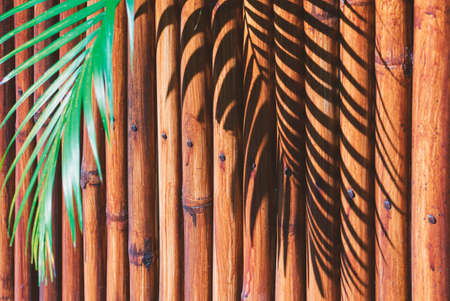 Tropical background - palm leaf with shadow on a background of brown bamboo wall.  Photo with soft , selective focus. Wide photo for web site slider. Empty place for text, copy space.   Reklamní fotografie