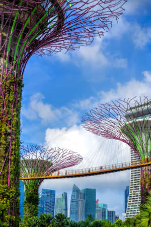 Gardens by the Bay in Singapore at day. People walk on a suspension bridge, in the background skyscrapers of the business district of the city. Low angle of view.  Photo with blur in motion.