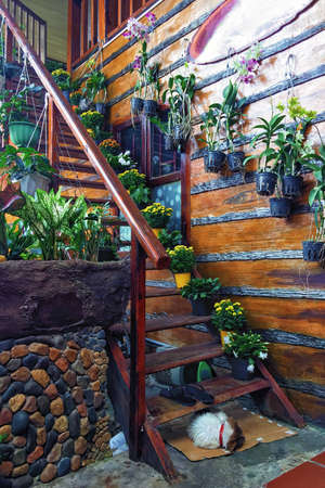Wooden staircase decorated with fresh flowers in pots. Decor elements in a country house. Vertical photo