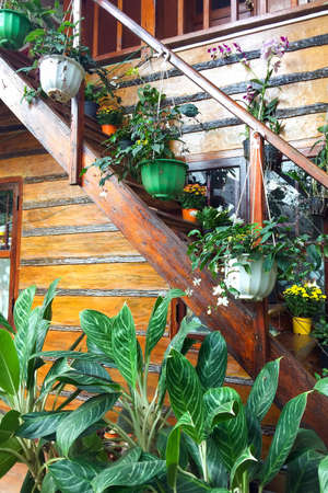 Wooden staircase decorated with flowers in hanging pot. Eco-friendly decor in a country house 免版税图像