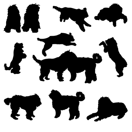 inSet of black silhouette of dogs bobtail on white background. Collection various forms, pose. Lies, sits, plays,walks. Elements for design, pet shop, food for animals. Vector illustration