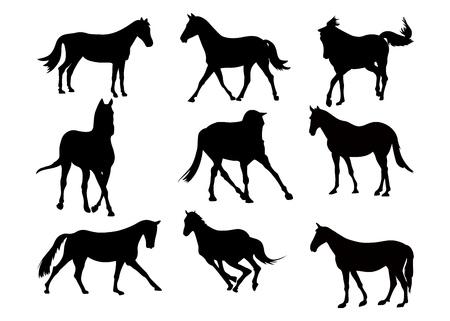 Zestaw czarna sylwetka koni na białym tle. Kolekcja różnych form, poza. Skoki, zabawy, spacery. Elementy do projektowania, sklep zoologiczny, karma dla zwierząt, szkoła jeździecka. Ilustracja wektorowa