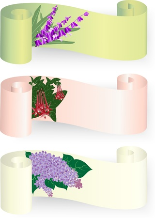 Paper scroll banners with lavender, lilac and fuchsia