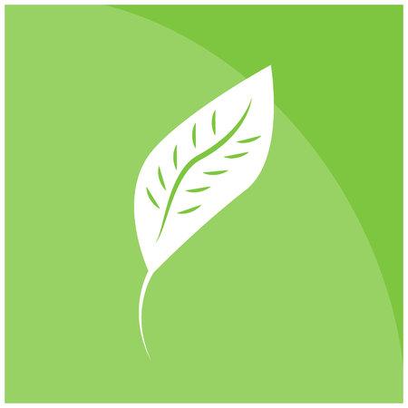 Vector icon leaf flat. Eps10.