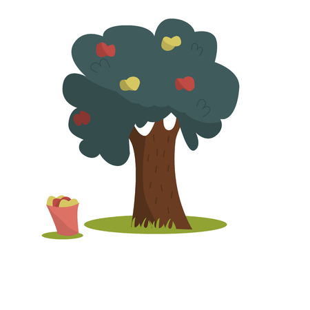 Apple tree. Bucket with apples. Red and yellow apples on the tree. Vector apple tree, isolated on a white background.