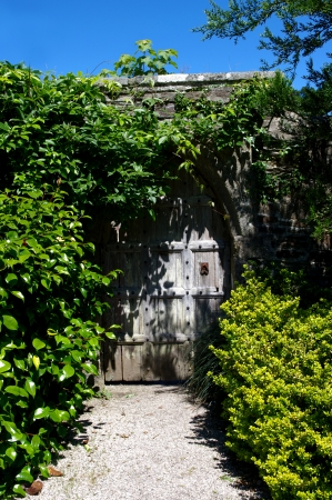 Garden door and path photo