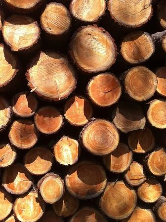 Pile of sawn timber Stock Photo
