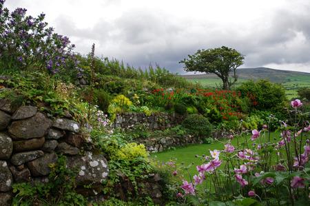 windswept: Gardens and windswept tree, Ffald-y-Brenin Christian Retreat Centre, Wales