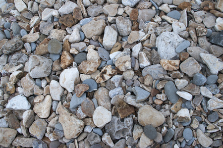 Pebbles on fossil beach Stock Photo