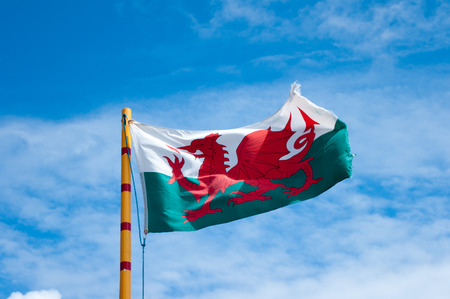 welsh flag: Welsh flag showing the red dragon of Wales flying in the summer sun.