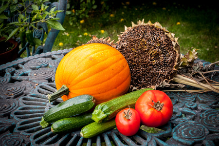 Garden veg harvest of pumpkin, courgettes, tomatoes and sunflower seeds. Stock Photo