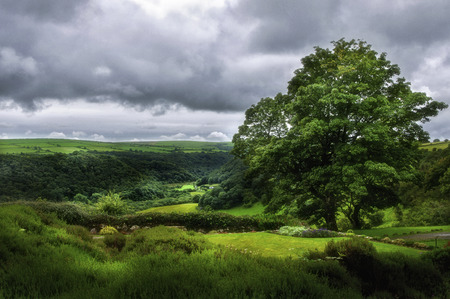 View over the Gwaun Valley in Pembrokeshire from Ffald-y-Brenin. Stock Photo
