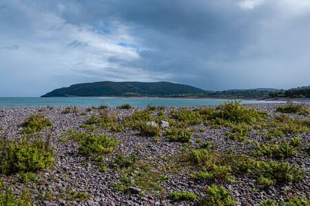 View to Bossington Hill, Somerset, from the shingle of Porlock Weir with its interesting salt-tolerant coastal vegetation.