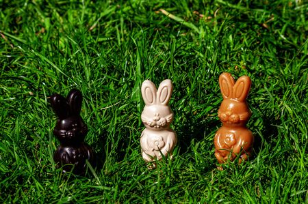 Three chocolate Easter bunny treats, different colours, on grass outdoors.