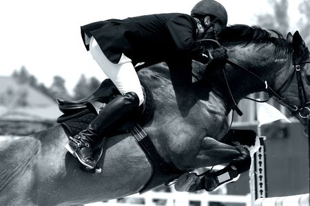 Equestrian Power in Action -  Jumping Close-up (BW Image) 스톡 콘텐츠