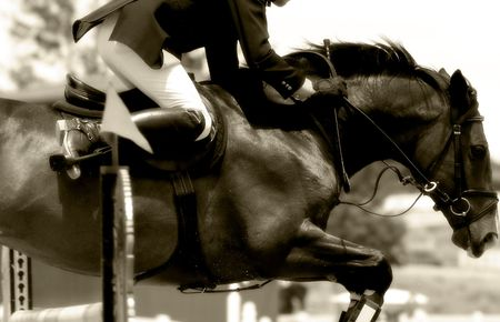Equestrian Power in Action #2 - Jumping Close-up (Sepia Tone, Soft Focus)