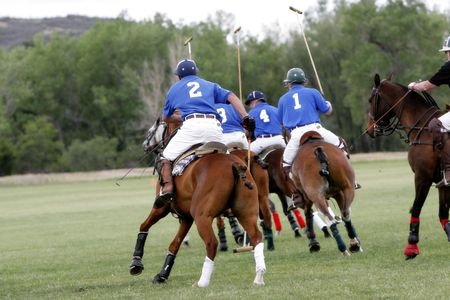 teammate: Polo Team Chases After a Shot (shallow focus) Stock Photo