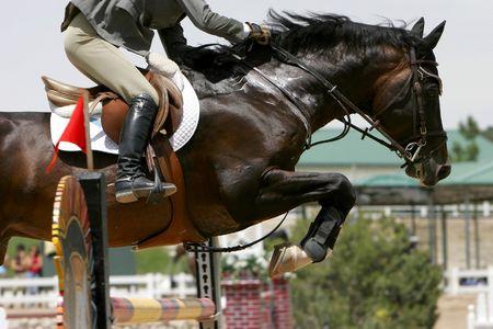 Equestrian Show Successo di salto Archivio Fotografico