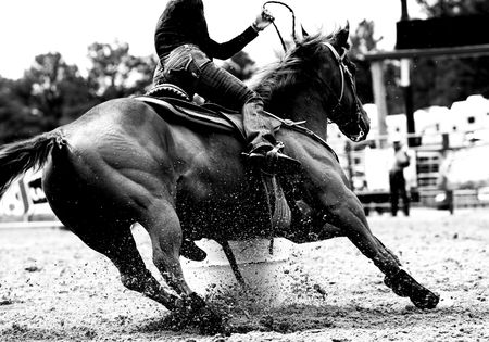 High contrast, black and white closeup of a rodeo Barrel Racer making a turn at one of the barrels (shallow focus on horse and exploding sand). Stock Photo