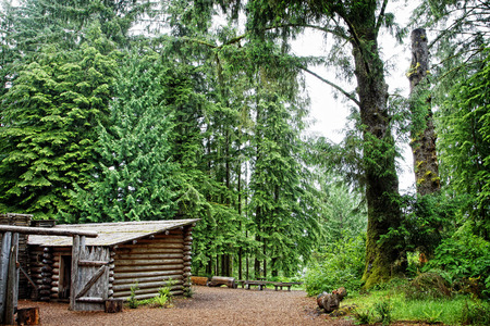 A portion of the Lewis and Clark expedition's Fort Clatsop in an old growth forest of the pacific northwest.