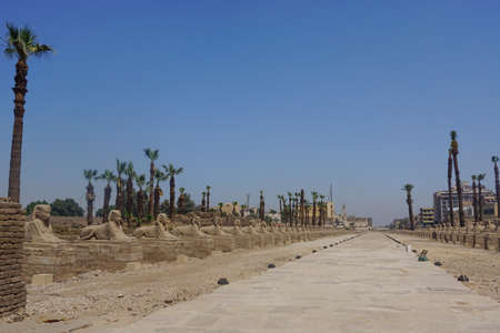Luxor, Egypt: The avenue of sphinxes leading away from Luxor Temple, built in 1400 BC on the east bank of the Nile River. Stock fotó